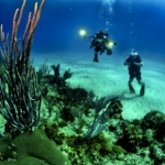scuba diving key west